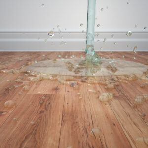 The Consequences of Roof Leaks